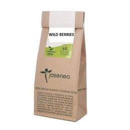 Wild Berrys, Bag of 10 Pyramids