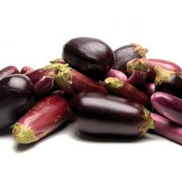 Aubergine Organic per/kg