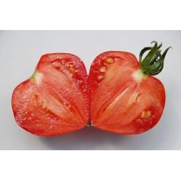 Oxheart Tomato per/kg